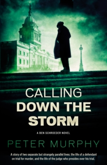 Calling Down the Storm : The Fifth Ben Schroeder Legal Thriller, Paperback Book