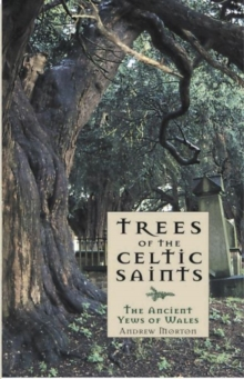 Trees of the Celtic Saints �  The Ancient Yews of Wales, Paperback Book