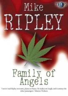 Family of Angels, Paperback Book