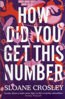 How Did You Get This Number, Paperback / softback Book