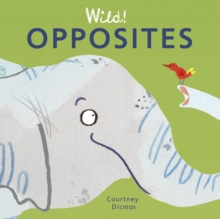 Opposites, Board book Book