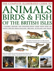 The Complete Illustrated Guide to Animals, Birds & Fish of the British Isles : A Natural History and Identification Guide with Over 440 Native Species from England, Ireland, Scotland and Wales, Paperback Book