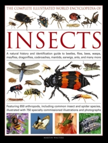 Complete Illustrated World Encyclopedia of Insects, Hardback Book