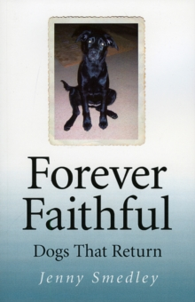 Forever Faithful : Dogs That Return, Paperback / softback Book