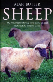 Sheep : The Remarkable Story of the Humble Animal That Built the Modern World, Paperback Book