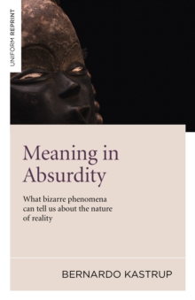 Meaning in Absurdity : What Bizarre Phenomena Can Tell Us About the Nature of Reality, Paperback / softback Book