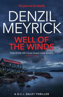 Well of the Winds : A D.C.I. Daley Thriller, Paperback Book