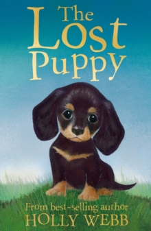 The Lost Puppy, Paperback Book