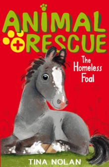 The Homeless Foal, Paperback / softback Book