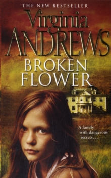 Broken Flower, Paperback Book