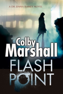 Flash Point : A Psychological Thriller, Paperback / softback Book
