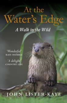 At the Water's Edge : A Walk in the Wild, Paperback Book