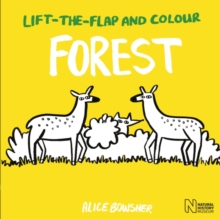 Lift-the-Flap and Colour Forest, Paperback Book