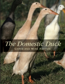 The Domestic Duck, Paperback / softback Book