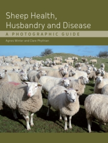 Sheep Health, Husbandry and Disease : A Photographic Guide, Hardback Book