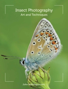 Insect Photography : Art and Techniques, Paperback Book