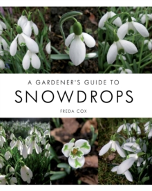 A Gardener's Guide to Snowdrops, Hardback Book