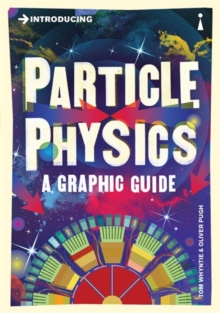Introducing Particle Physics : A Graphic Guide, EPUB eBook