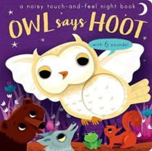 Owl Says Hoot : A Noisy Touch-and-Feel Night Book, Novelty book Book