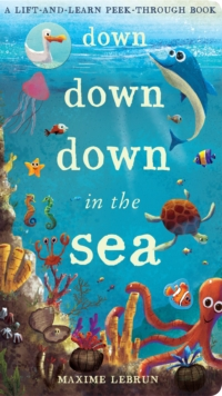 Down Down Down in the Sea : A lift-and-learn peek-through book, Novelty book Book