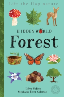 Hidden World: Forest, Novelty book Book