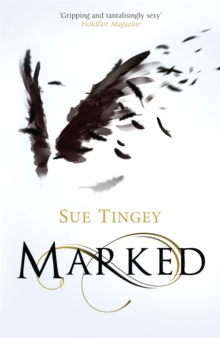 Marked : The Soulseer Chronicles Book 1, Paperback Book