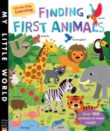Finding First Animals, Novelty book Book