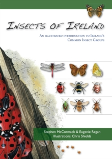 Insects of Ireland, Paperback Book