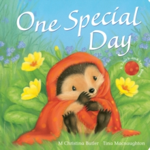 One Special Day, Board book Book