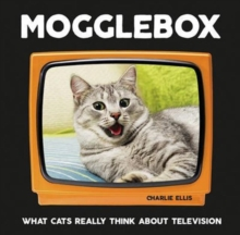 Mogglebox : What Cats Really Think About Television, Hardback Book