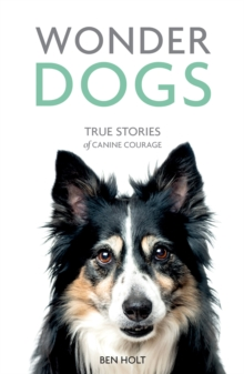 Wonder Dogs : True Stories of Canine Courage, Paperback / softback Book