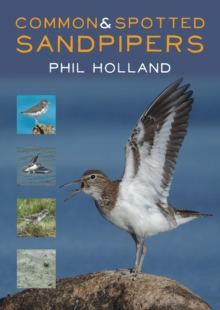 Common and Spotted Sandpipers, Paperback / softback Book