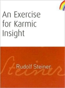 An Exercise for Karmic Insight, Paperback / softback Book