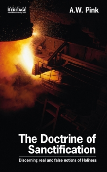 The Doctrine of Sanctification : Discerning real and false notions of Holiness, Paperback / softback Book
