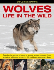 Exploring Nature: Wolves - Life in the Wild : Examine the Wonderful World of Wolves, Jackals, Coyotes, Foxes and Other Wild Dogs, Shown in 190 Exciting Images, Hardback Book