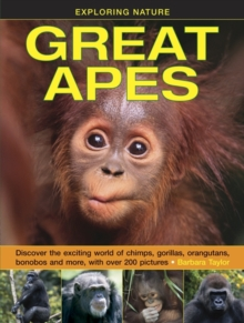 Exploring Nature: Great Apes, Hardback Book