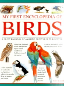 My First Encylopedia of Birds (Giant Size), Paperback Book