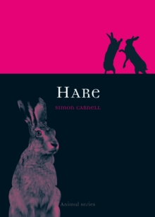 Hare, Paperback Book