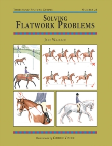 Solving Flatwork Problems, Paperback Book