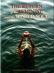 The Return of the Feminine and the World Soul, Paperback Book