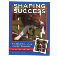 Shaping Success, Paperback / softback Book