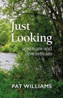 Just Looking : upstream and downstream, Paperback / softback Book