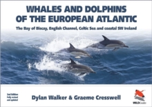 Whales and Dolphins of the European Atlantic - The Bay of Biscay, English Channel, Celtic Sea, and Coastal Southwest Ireland, Fully Updated 2e, Paperback Book