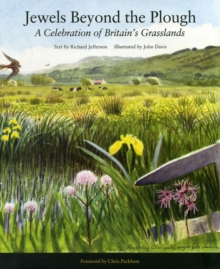 Jewels Beyond the Plough : A Celebration of Britan's Grasslands, Hardback Book