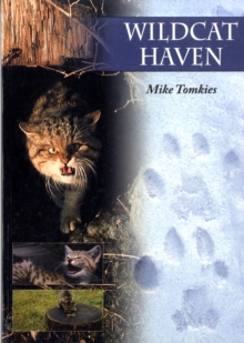 Wildcat Haven, Paperback / softback Book