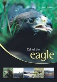Call of the Eagle, Paperback Book