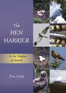 The The Hen Harrier : In the Shadow of Slemish, Paperback / softback Book