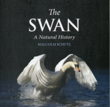 The Swan : A Natural History, Hardback Book