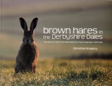 Brown Hares in the Derbyshire Dales : The Story of One of the Peak District's Most Enigmatic Mammals, Paperback / softback Book