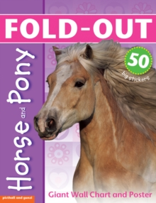 Fold-Out Poster Sticker Book: Horse & Pony, Fold-out book or chart Book